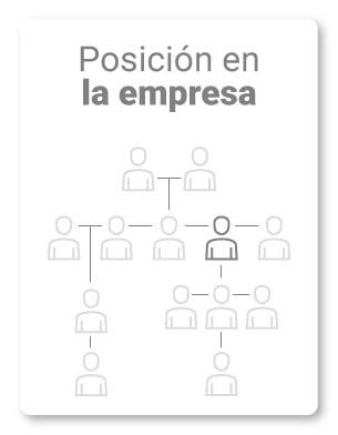 6. ¿Cuál es tu rol o posición en la empresa?      ¿Qué implica?