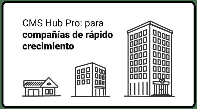 art-08-CMS-Hub-Professional