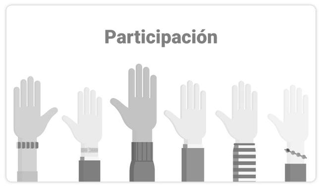 art-29-Participacion