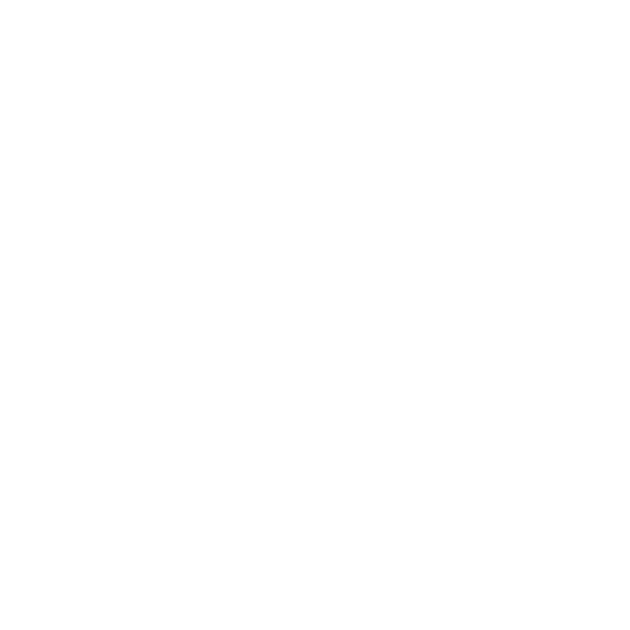 Logo_MS_SFN