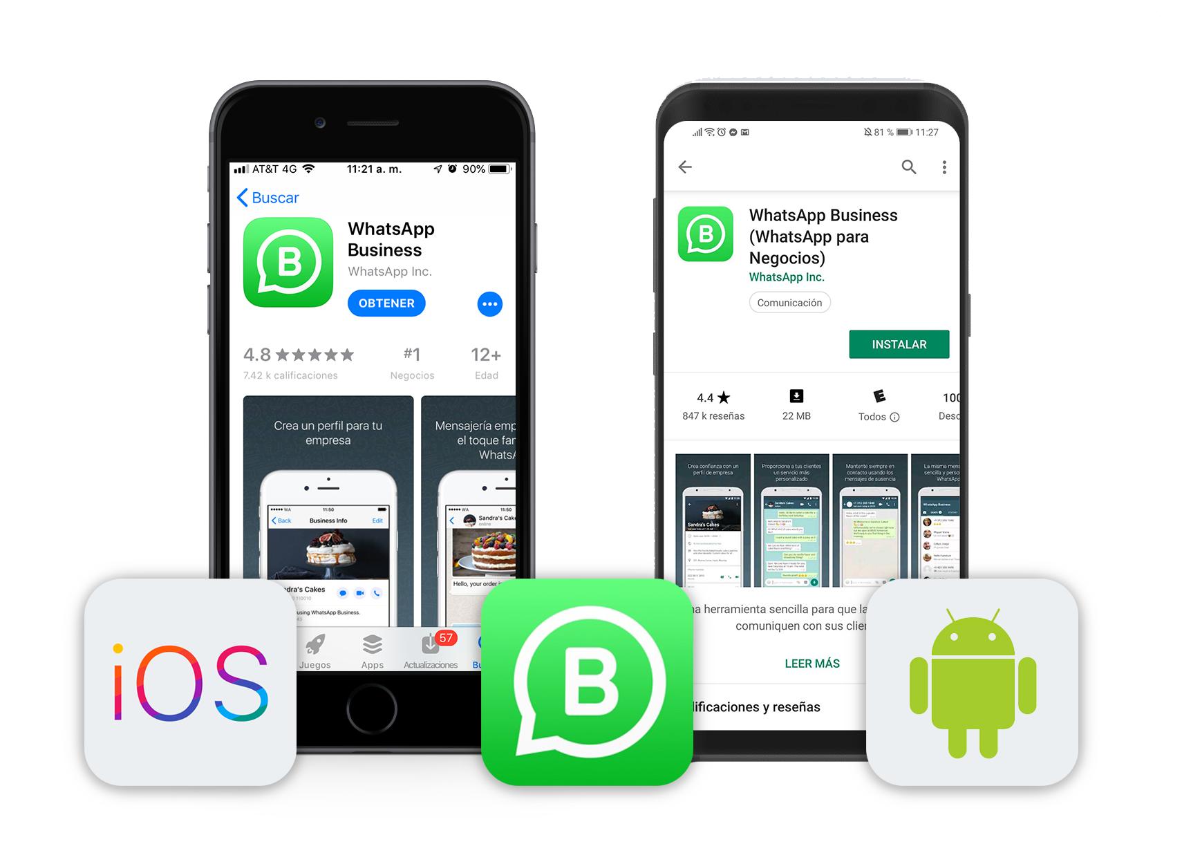 screenshot-whatsapp-business copia