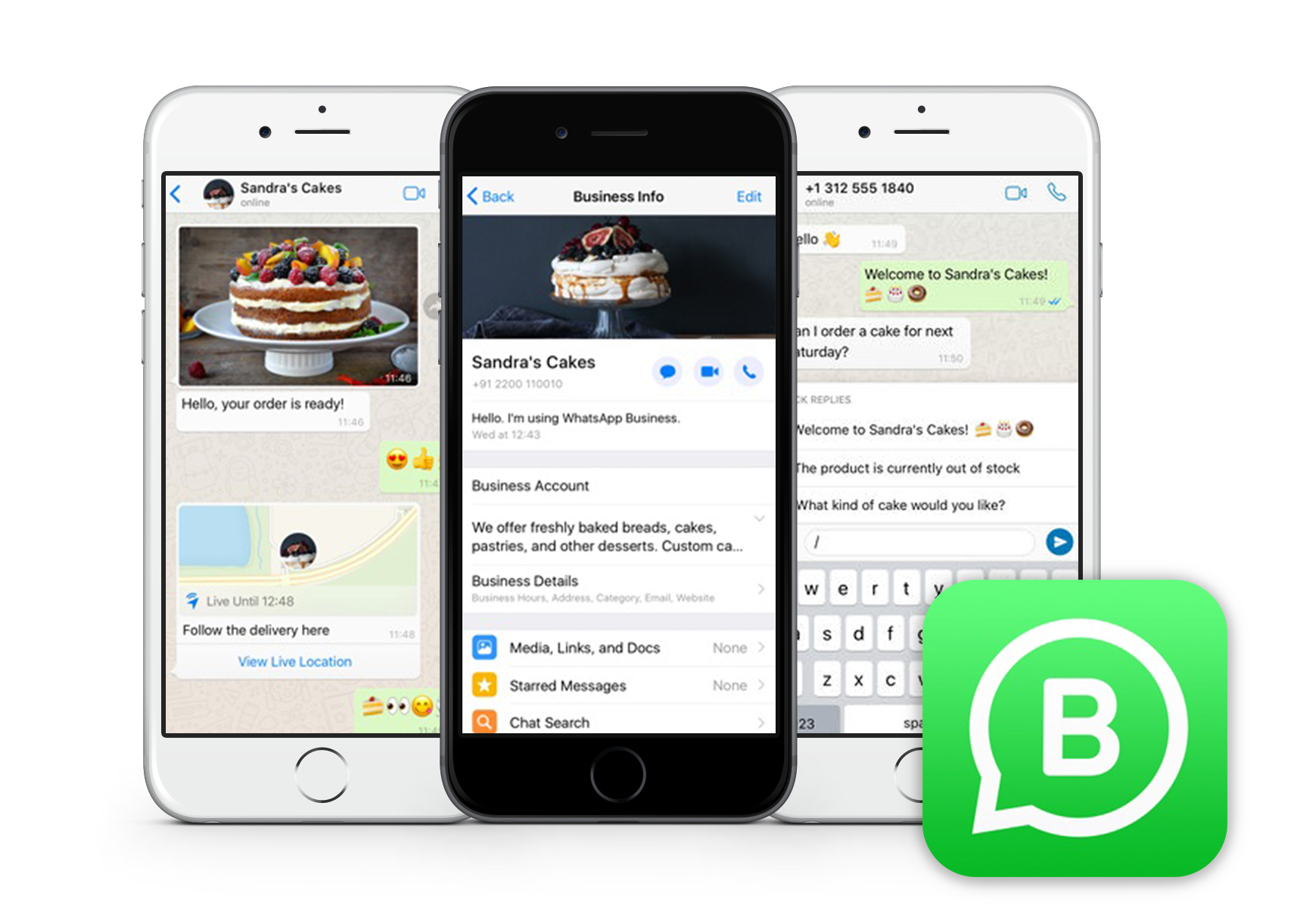 screenshot-whatsapp-business