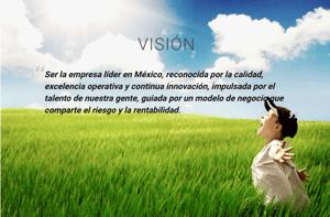 jugos del valle vision