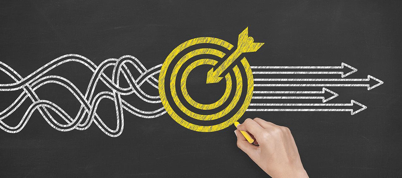 Los objetivos y las expectativas del cliente